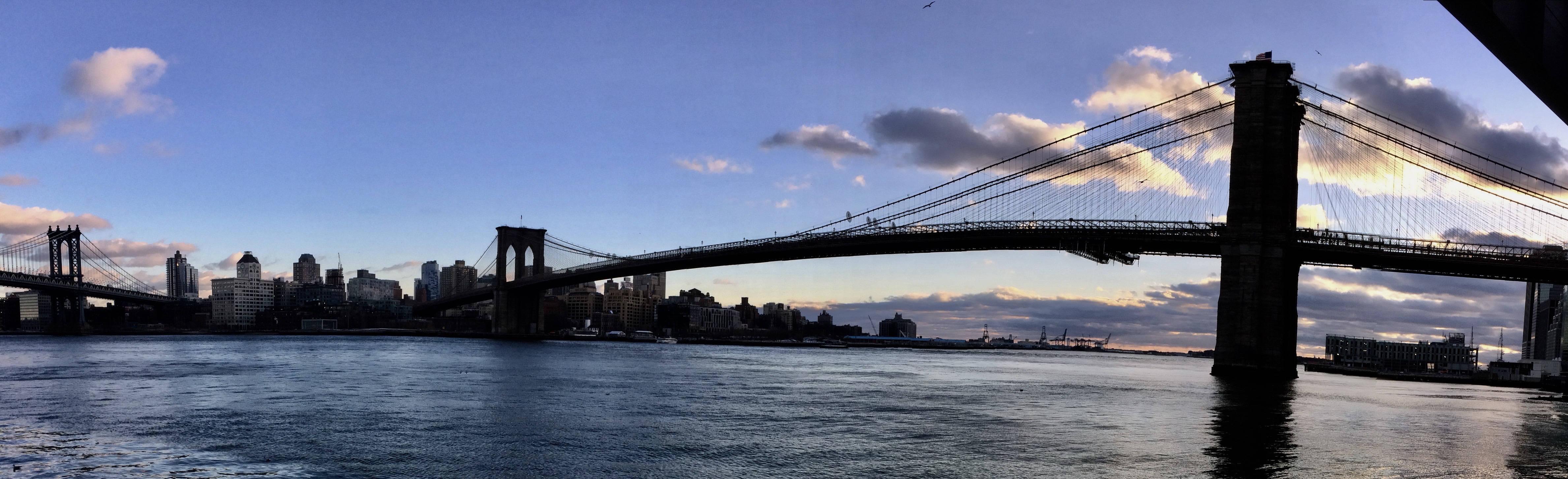 Brooklyn Osteopathy